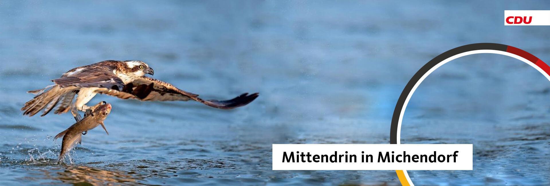 Mein Wahlkreis - Michendorf
